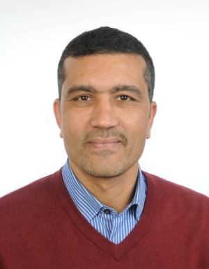 Tarek Kotb, Stucki AG